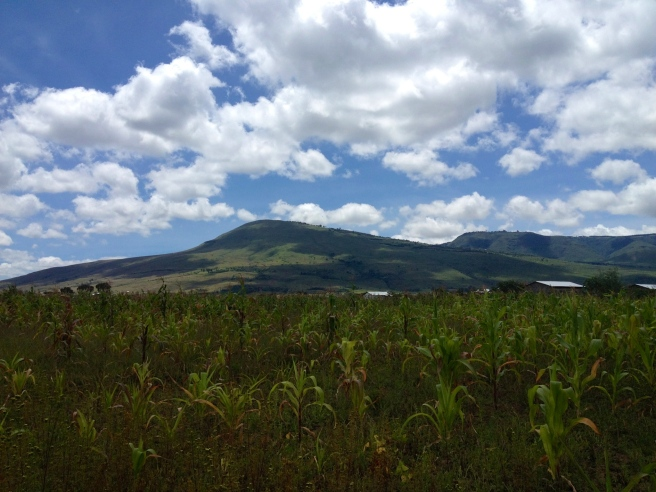Rift Valley, Maai Mahiu, Kenya (2012)